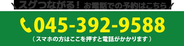045-392-9588